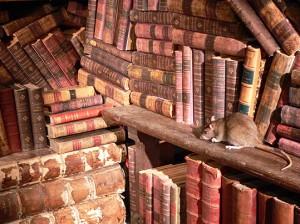 rat de bibliothque